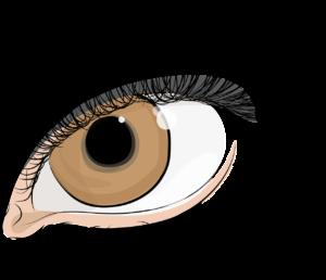 Künstliche Wimpern